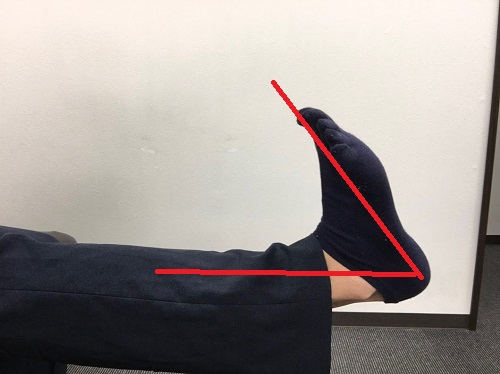 足首の柔軟性 正常